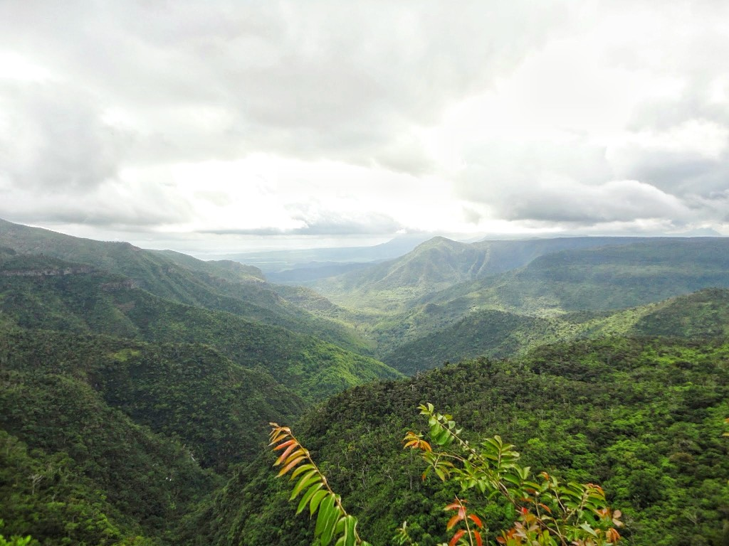 View of the Black River Gorges National Park